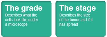 grades-figure1